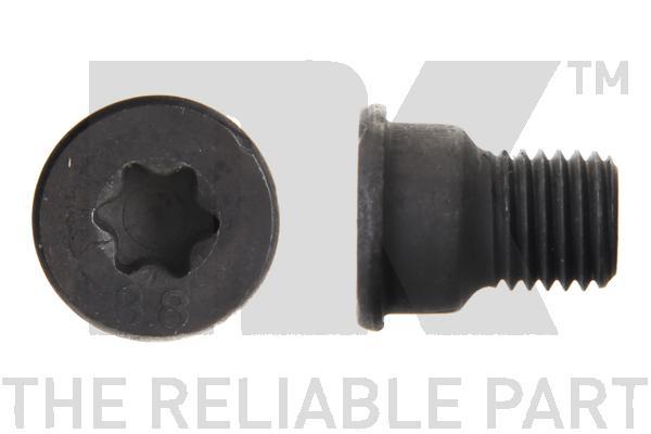 Vis disque de frein avant (X1)