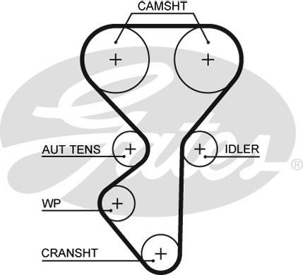 Courroie de distribution (X1)