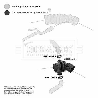 Tuyau d'aspiration, alimentation d'air BORG & BECK BTH1494 (X1)