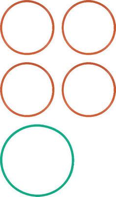 Joint de collecteur (X1)